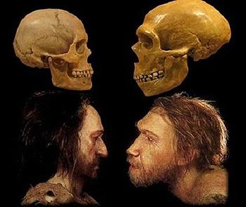 ¿Tuvo algo que ver el Homo sapiens con la desaparición del hombre de Neandertal?