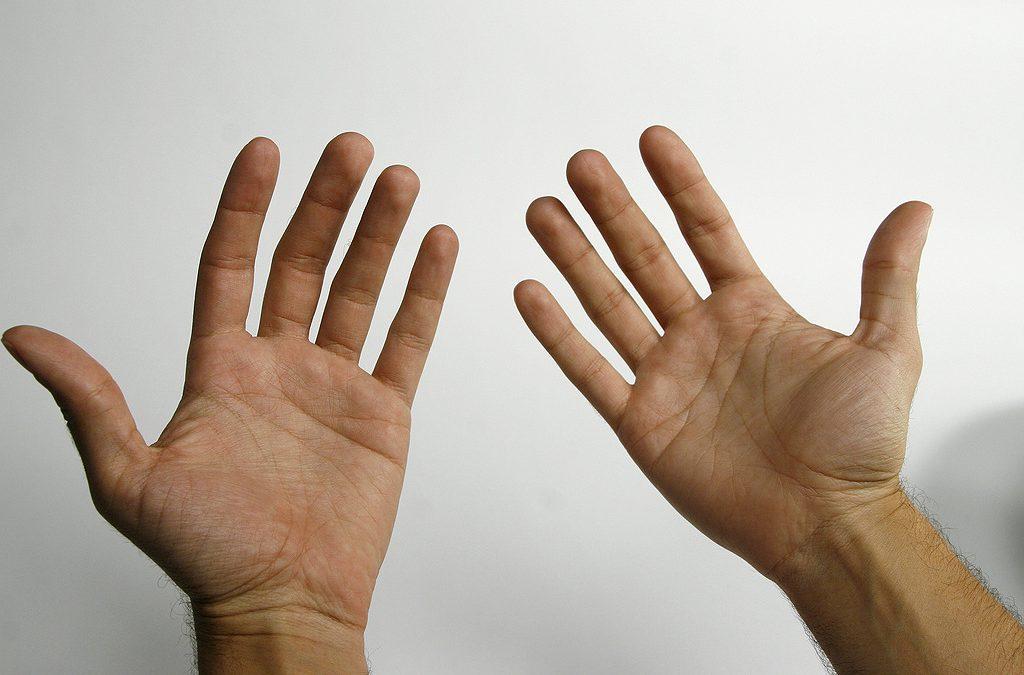¿Por que temos 5 dedos? Sofía, 9 anos