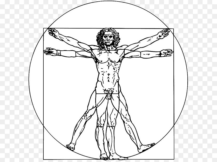 ¿O noso corpo é simétrico e perfecto? Ana, 11 anos
