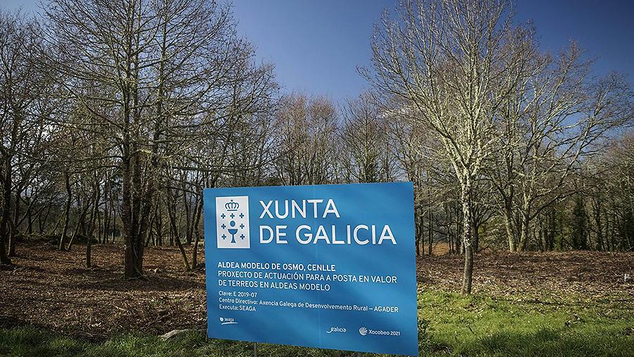 Medio Rural aspira a mobilizar 320.000 leiras de dono descoñecido A futura lei autonómica permitirá que pasen a mans da Xunta e non do Estado