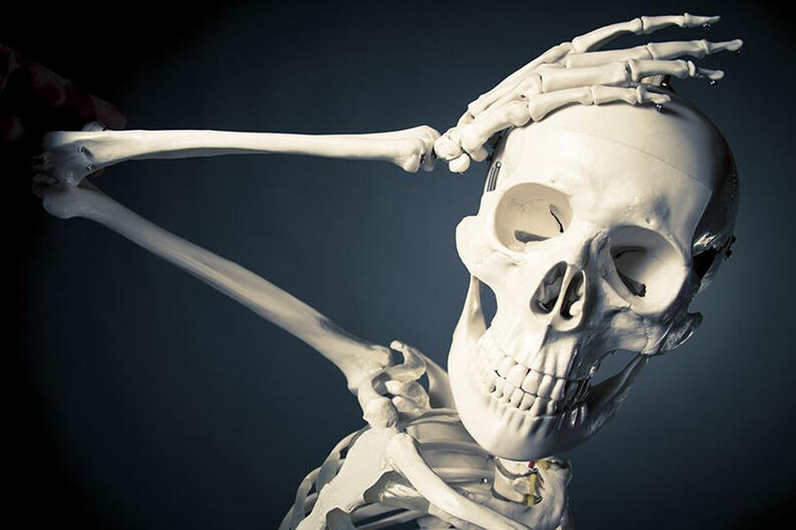 ¿Por que só temos un óso que se move na cabeza? Melisa, 11 anos