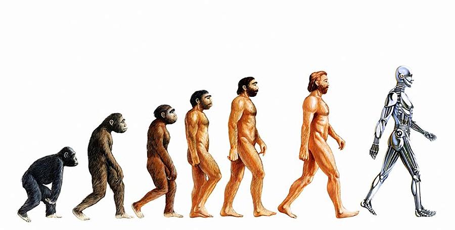 ¿Por que evolucionamos? Adriana, 10 anos